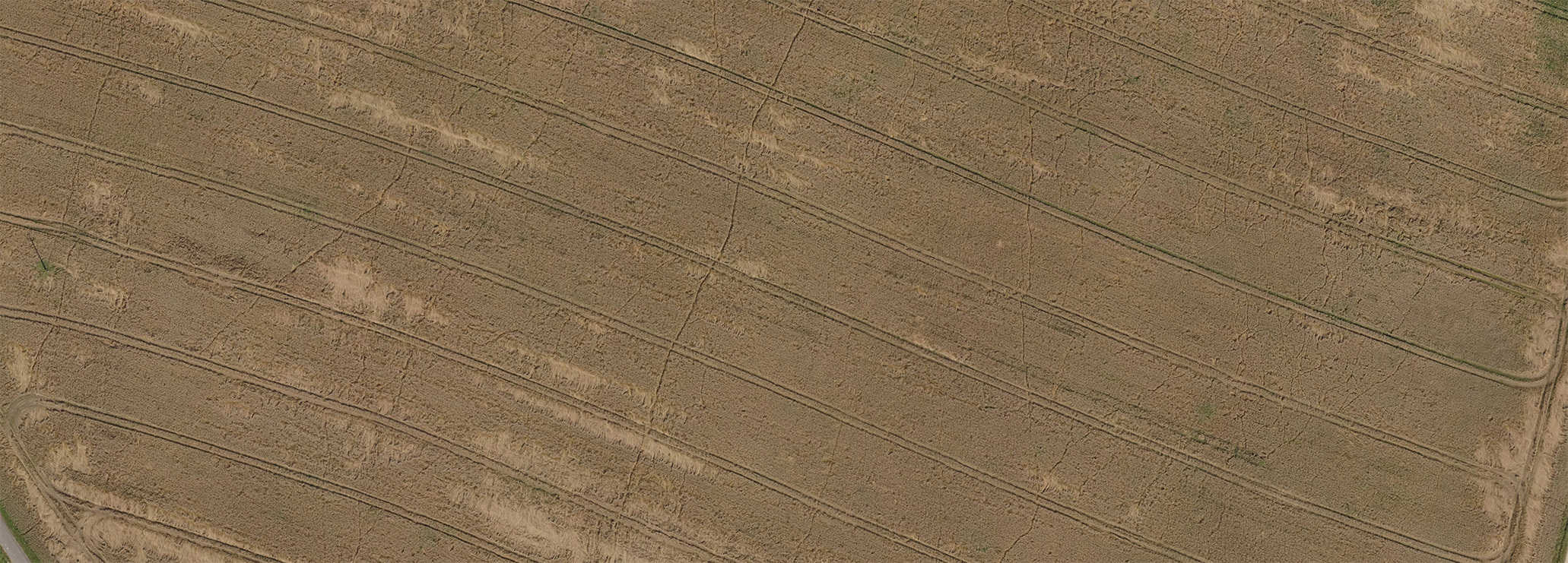 Ortofotomapa z drona - fragment pola